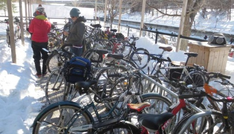 Multiple bikes parked in a bike rack along the Rideau Canal in Winter